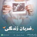 صدای قلب جنین
